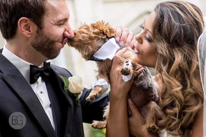 edmonton wedding photographer st josephs basilica puppy lick funny cute