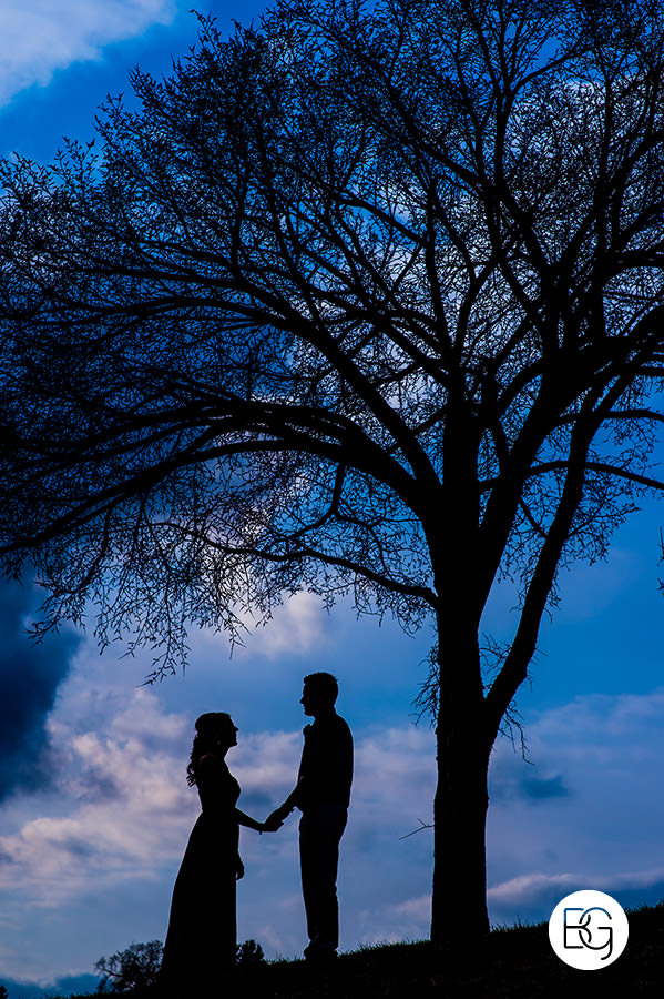 Edmonton valley zoo wedding silhouette spring blu