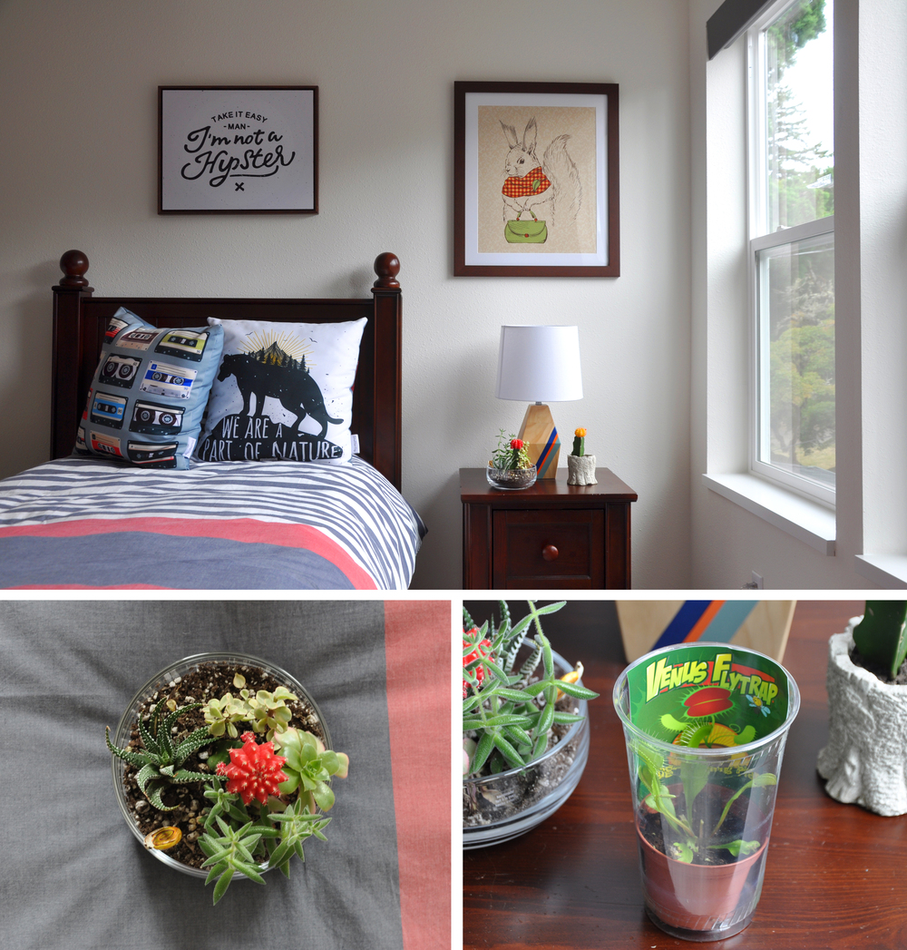 Assorted Succulents |  Venus Fly Trap | Twin Bylines Duvet | Table Lamp | Shutterfly.com Custom Pillows and Prints |