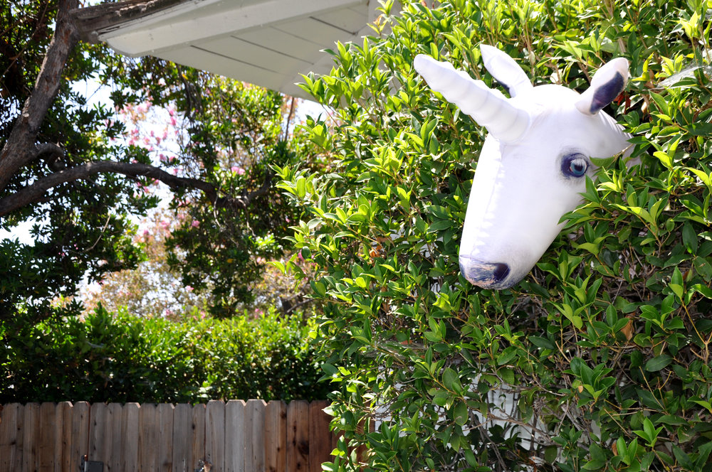 We found this inflatable Unicorn Head when we were exploring Burbank but you can find it on amazon too!