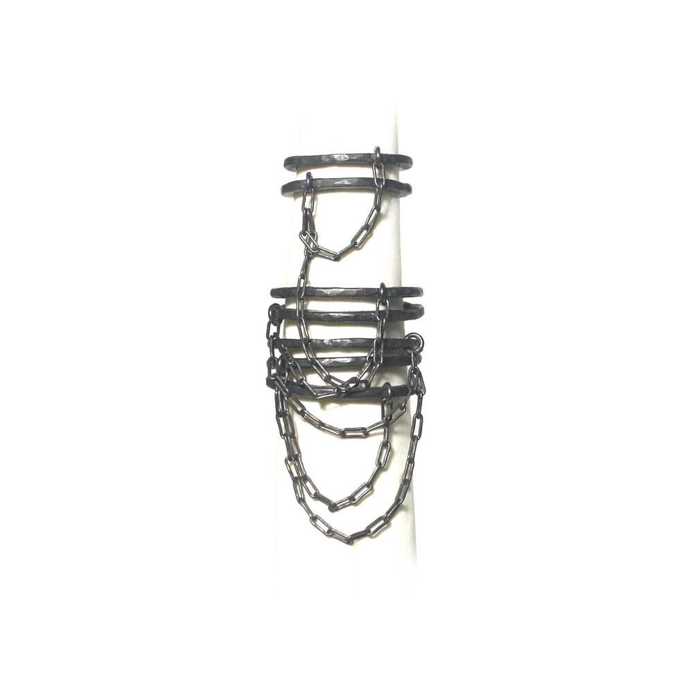 Assemblage2 rings