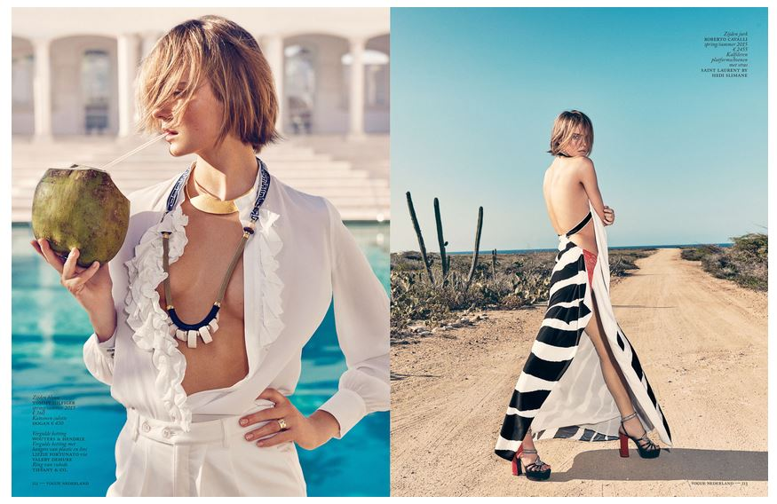 Vogue Flamingo 3.JPG