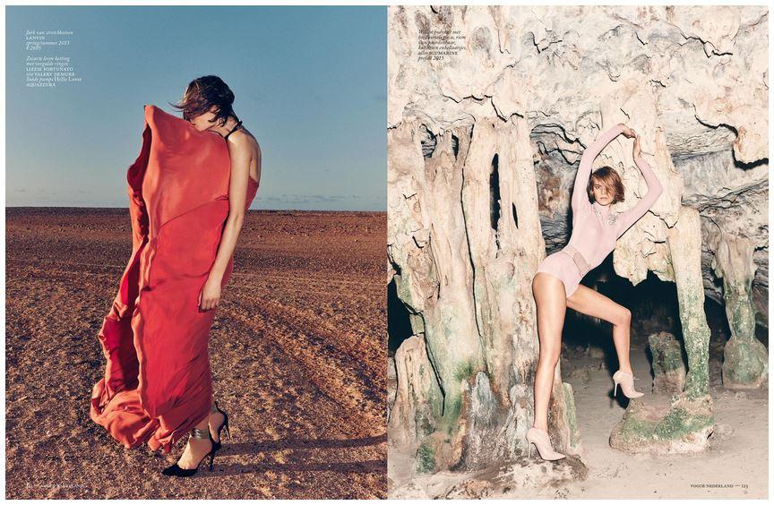 Vogue Flamingo 7.JPG