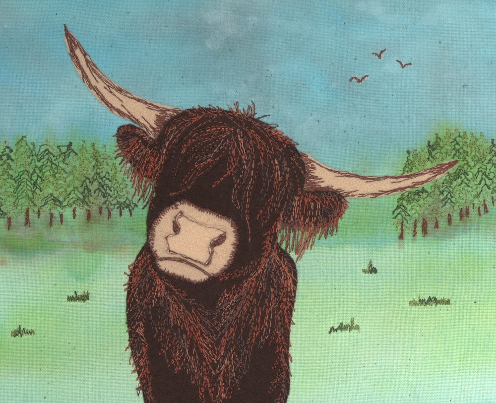 "Highland Coo - Mounted prints (10""x8"") - £10"