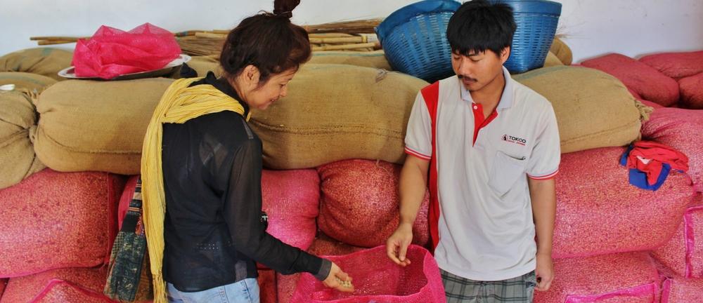 Kao Jai Coffee Farmer Satisfied