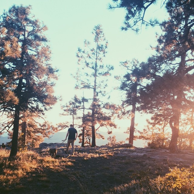 Take a daytrip to visit the Mogollon Rim in Payson