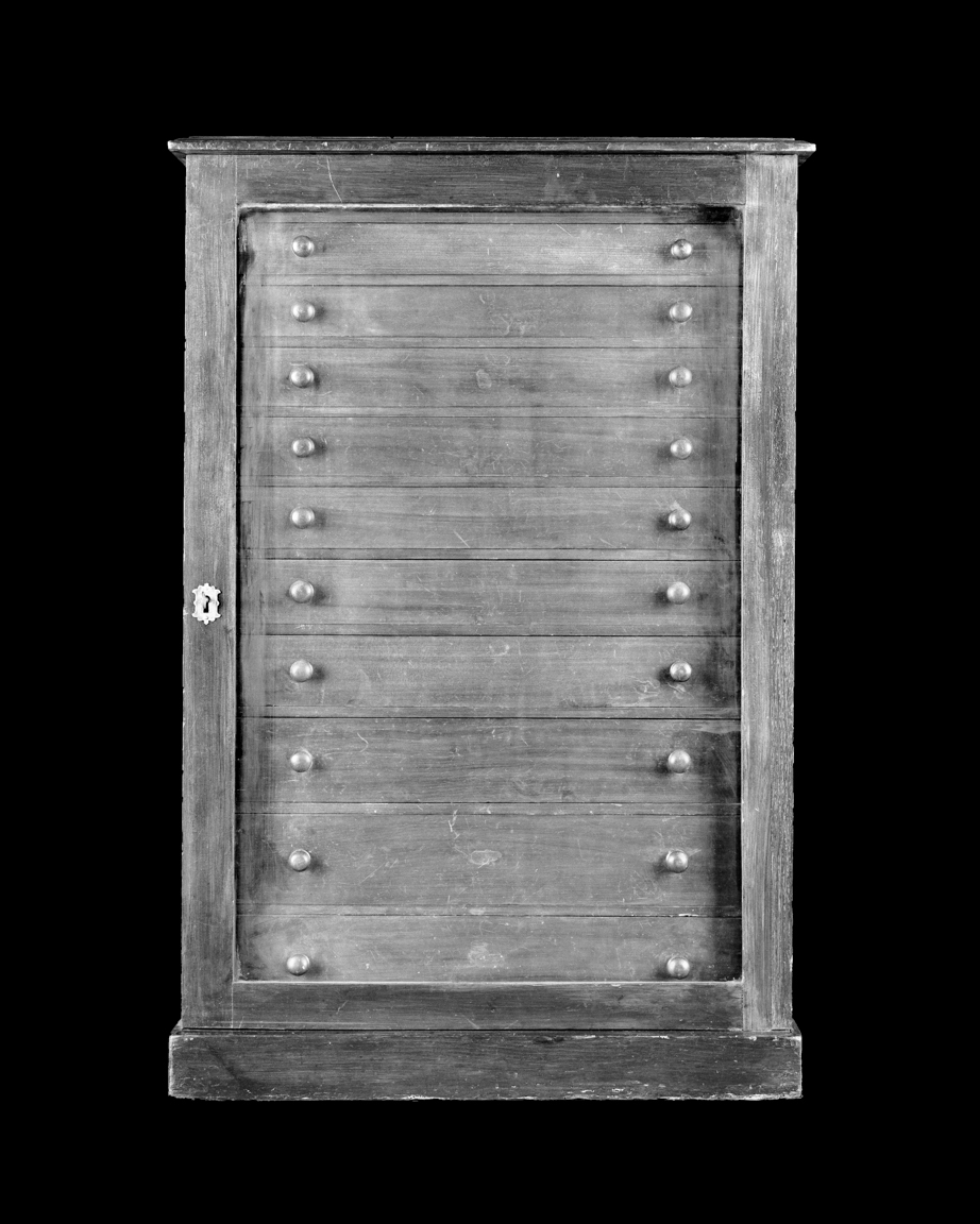 Entomologists cabinet, circa 1880.