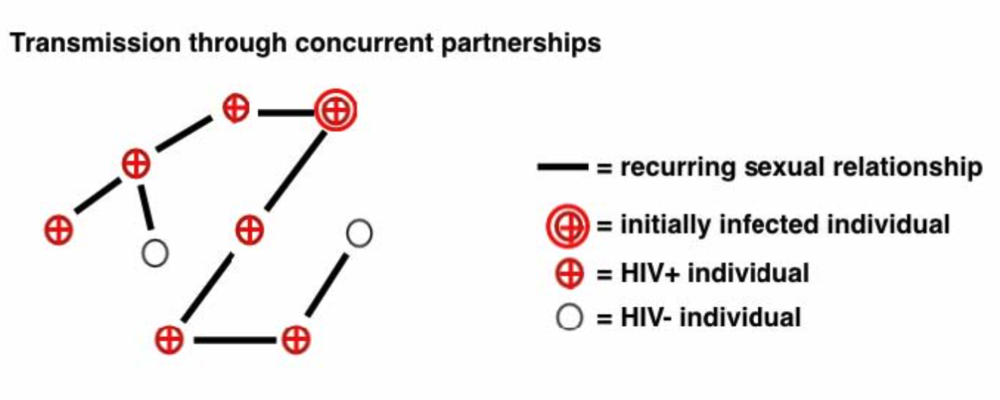 A diagram showing how  concurrent sexual relationships foster the spread of HIV