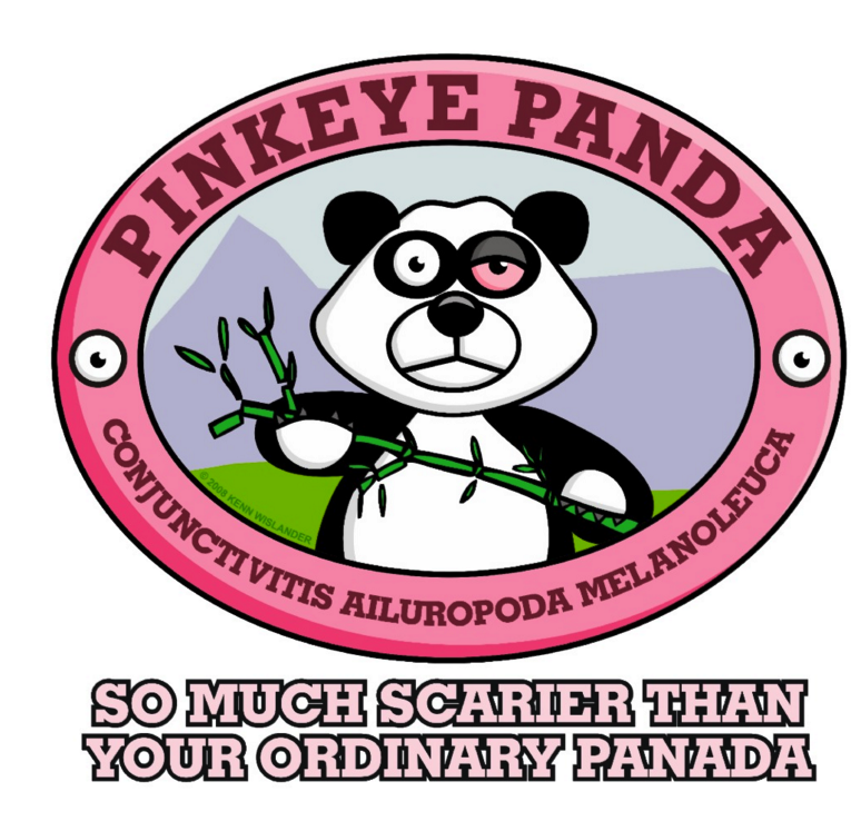 why do people fear pink eye so much tracking zebra rh trackingzebra com Pink Eyes Anime pink eye cartoon pic