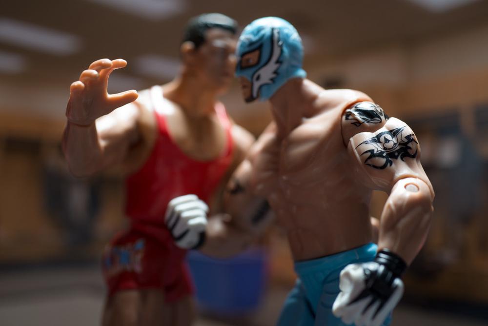 Palmer_20140506_World Wrestling-169-Edit.jpg