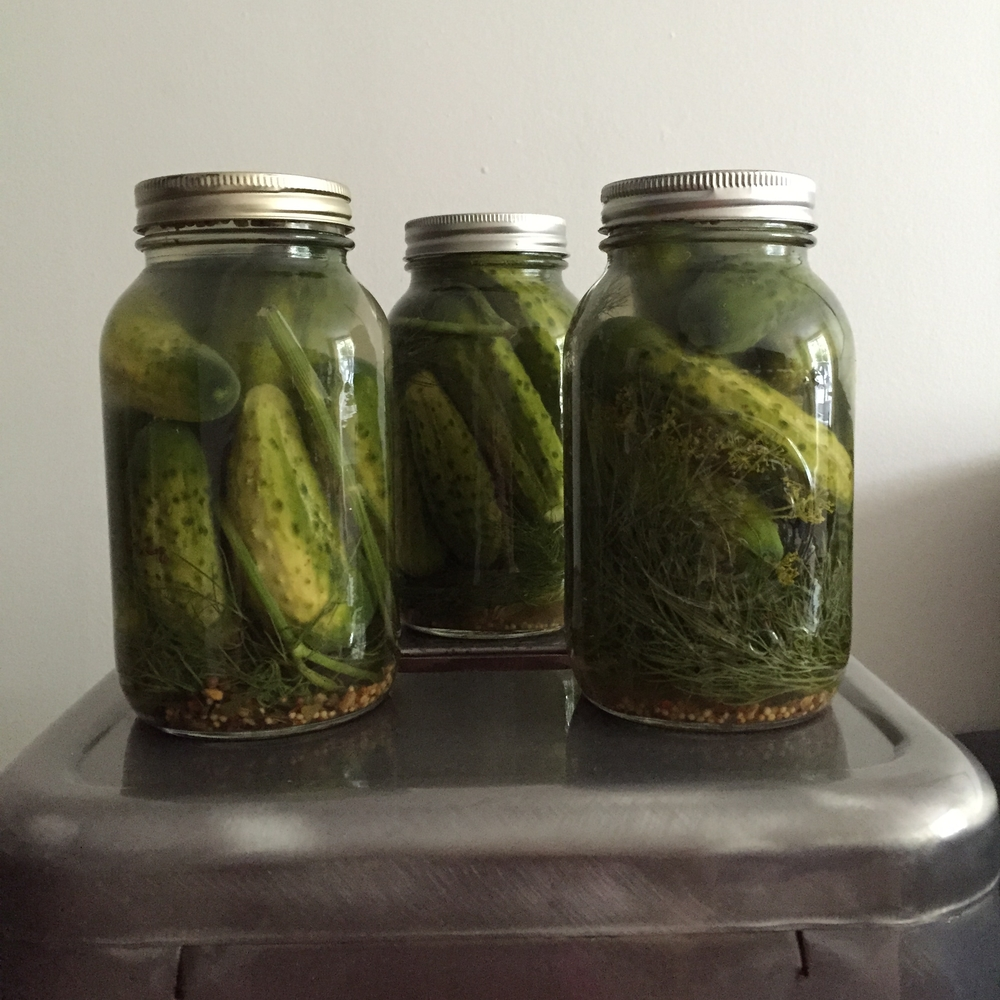 Fermented pickles with tons of fresh organic dill are my favourite.