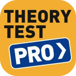 Theory Test Pro - Solo Developer
