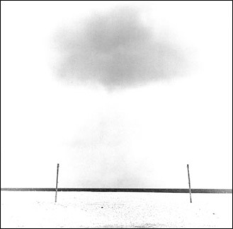 Two Poles, Nissequogue, NY - Carbon Ink Print