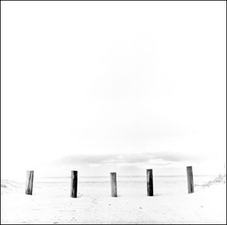 Five Pilings, Nissequogue, NY - Carbon Ink Print