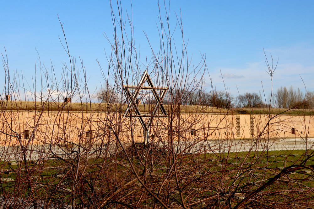 The Star of David (Theresienstadt concentration camp)