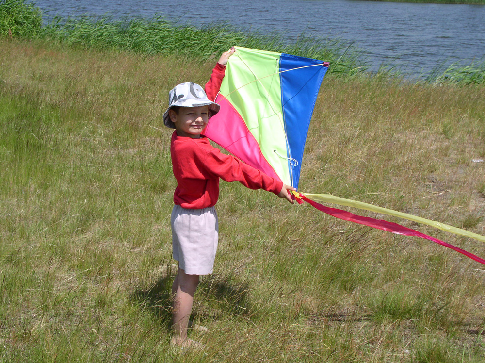 boy, summer, kite