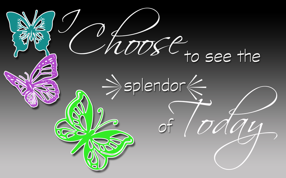 I choose to see the splendor of today