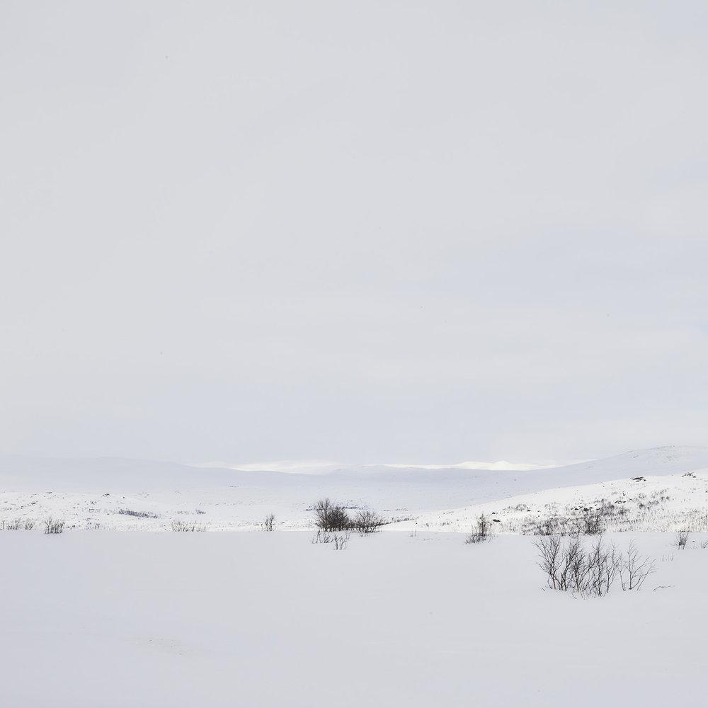 Tromsø_73_MJP_Low Res.jpg