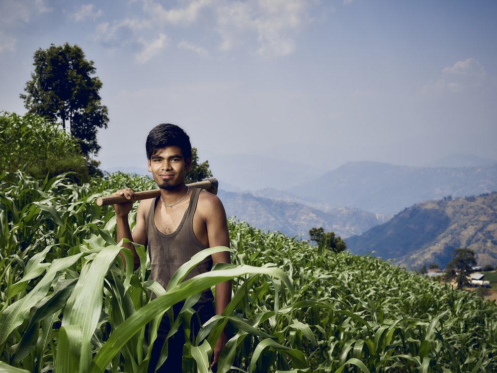 48_TF_Nepal17_CF011566_MJP.jpg