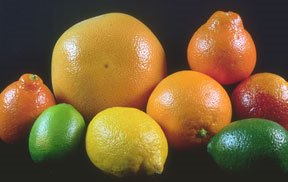 citrus-322021-resized-600