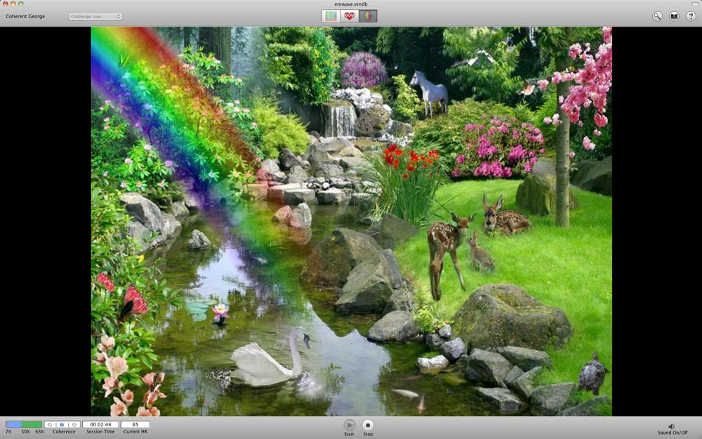 garden-16x9.png