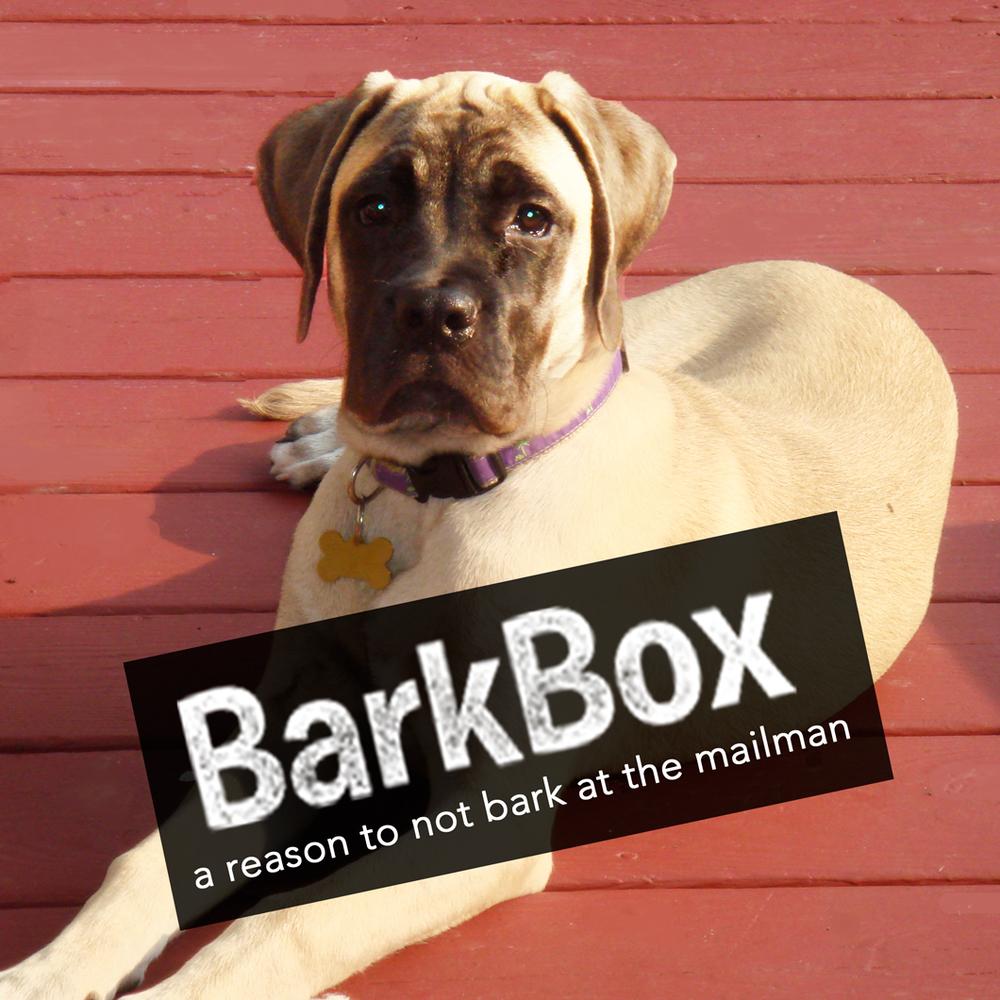 barkbox1.jpg