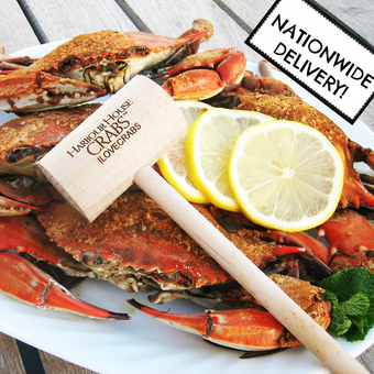 featured_maryland-steamed-crab-kit-regular-size.4ffa9d9221fe4d8c6b67e09cada7e472.png