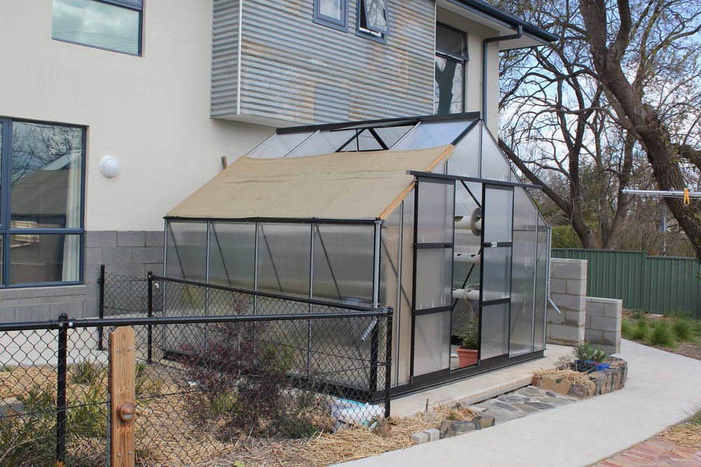 One of a Kind Apartments greenhouse3.jpg