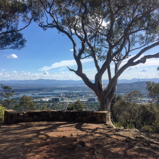 A beautiful view of Canberra from near the top of Mount Ainslie