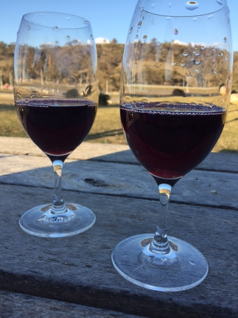 Enjoy a glass of wine at one of Canberra's gorgeous vineyards (photo taken at Mount Majura Vineyard)