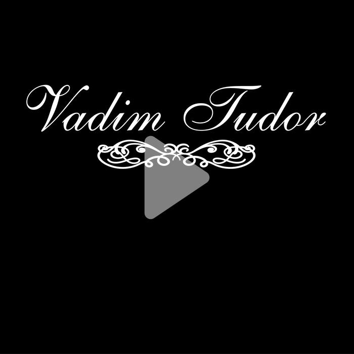 Vadim Tudor Selfzine