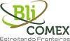 Logo BLI.jpg