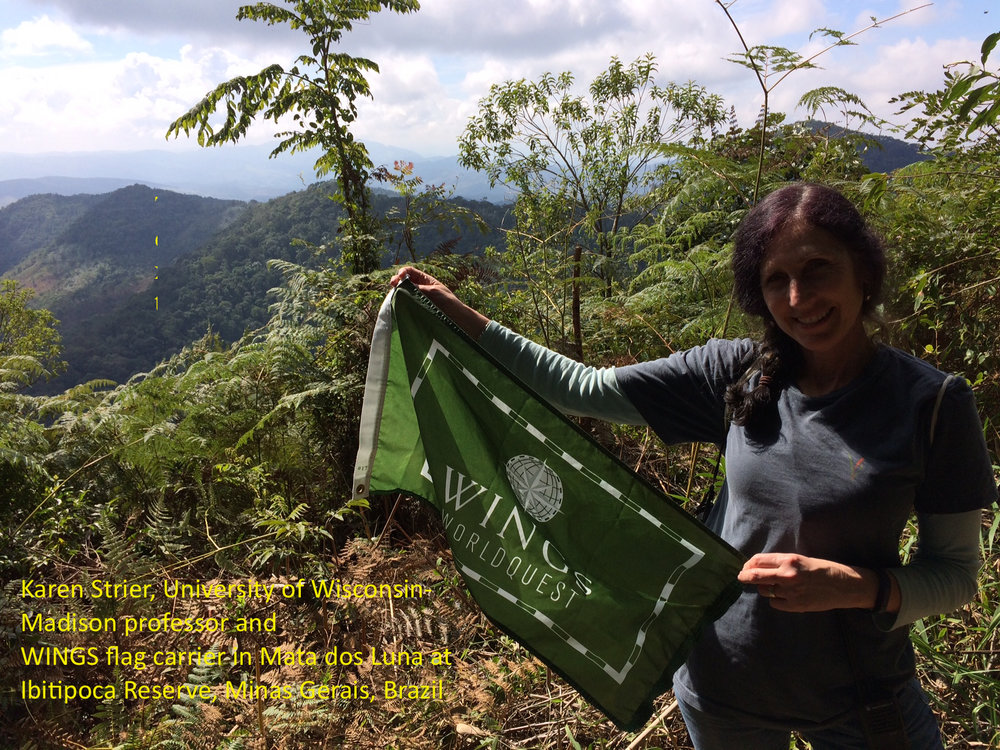 Karen Strier, University of Wisconsin-Madison professor and WINGS flag carrier in Mata dos Luna at Ibitipoca Reserve