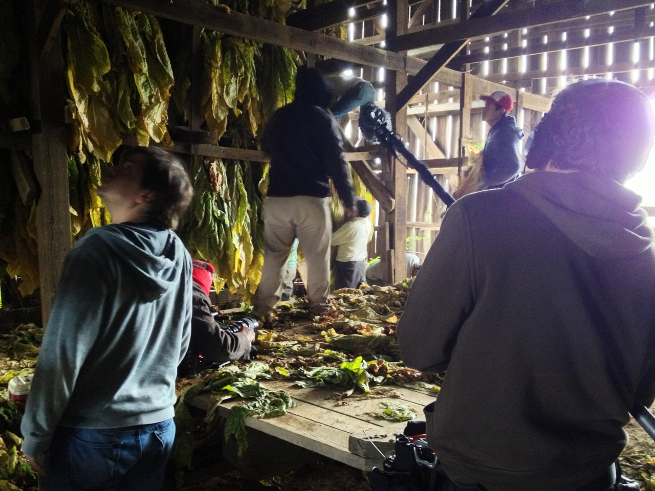 Laura snapped this picture of me, Lee and Justin while we were filming a crew hanging their tobacco in a barn.