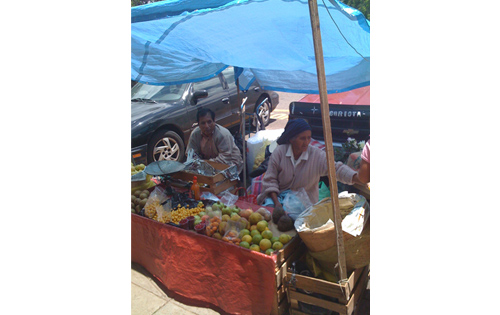 Teresa sell fruits in town.