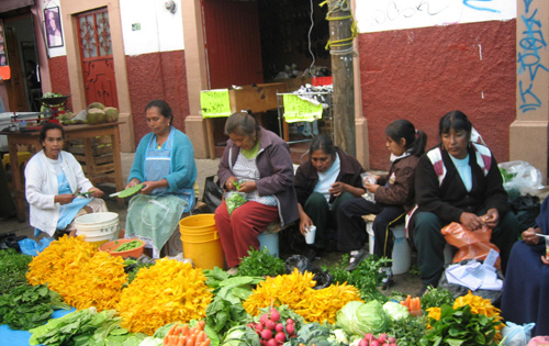 The woman of Patzcuaro selling vegitables.