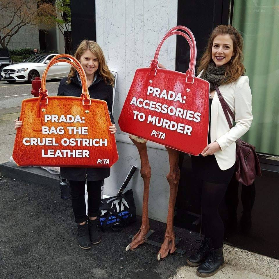 PETA protest outside of Prada. Photo: Helen Siwak of @Eco.Lux.Luv