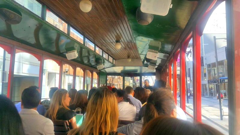 (toronto bus tour. photo: darryl Julot)