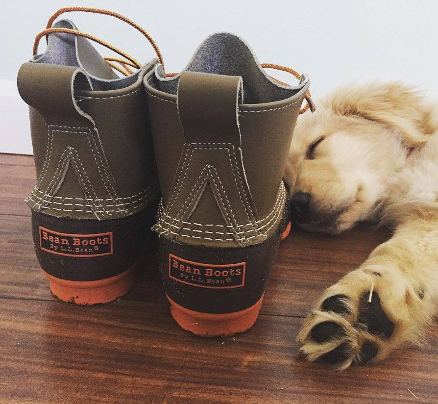 Photo: L.L.Bean Facebook