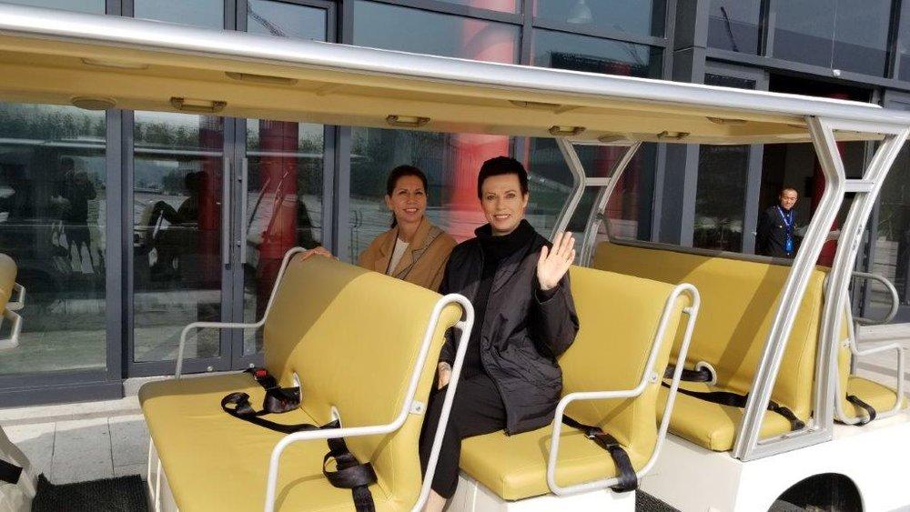 Electric Cart Transit