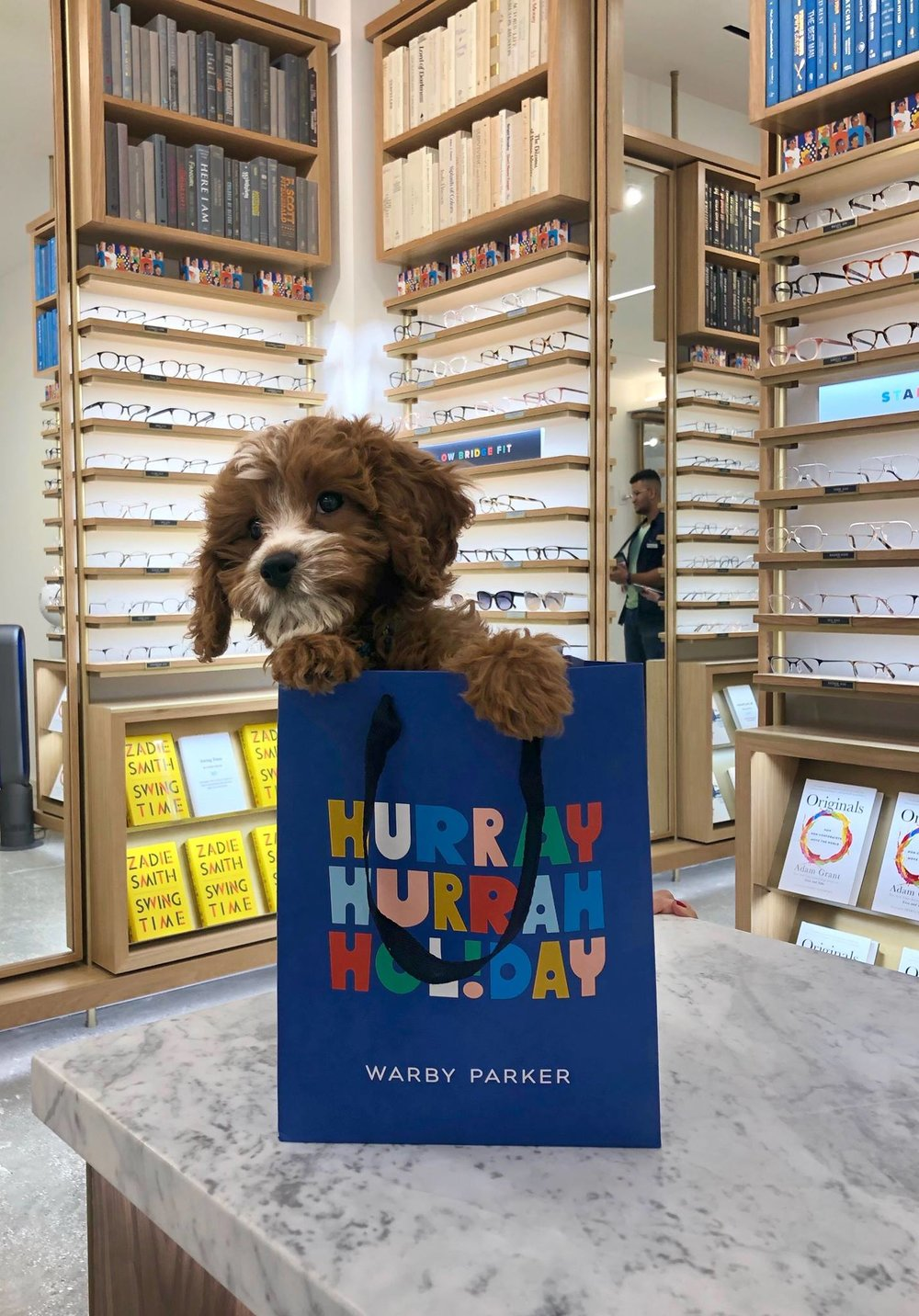 Photo: Warby Parker Facebook