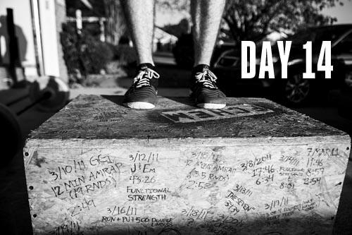 Day 14_Thumb.jpg