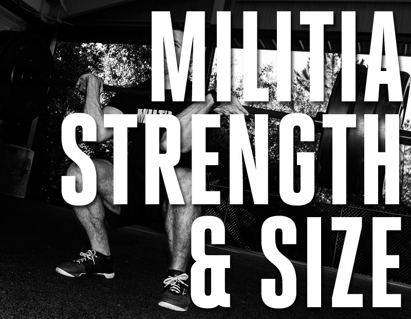 Size and Strength Cover.jpg