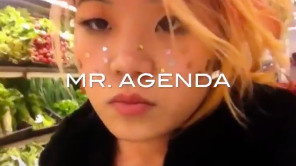 MR. AGENDA MUSIC VIDEO