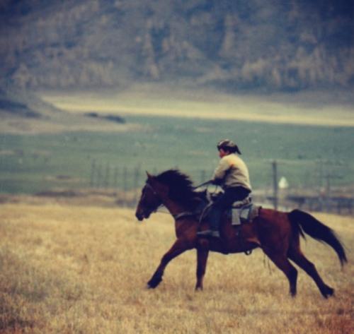 Altai Horseman