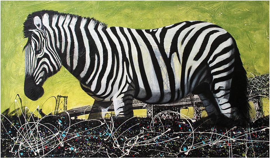 Zebra in Williamsburg