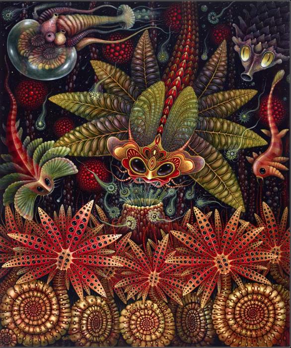 Star Creatures
