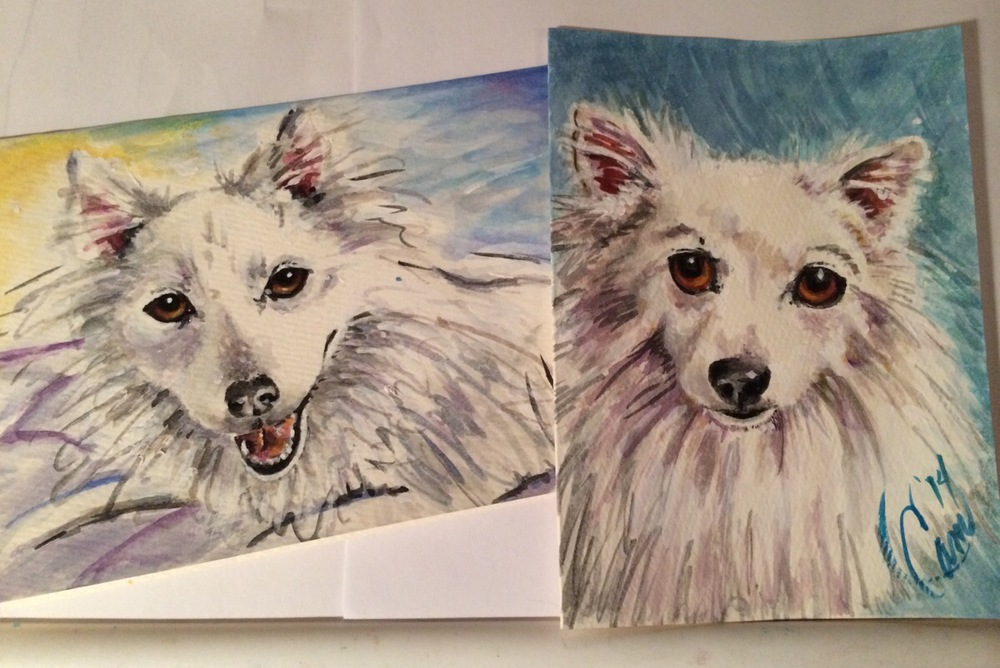 Quick watercolor sketched of my two puppies Max and Ruby. I like to paint card for my daughter, Jessie. Someone needs to be sure she has color in her college room.