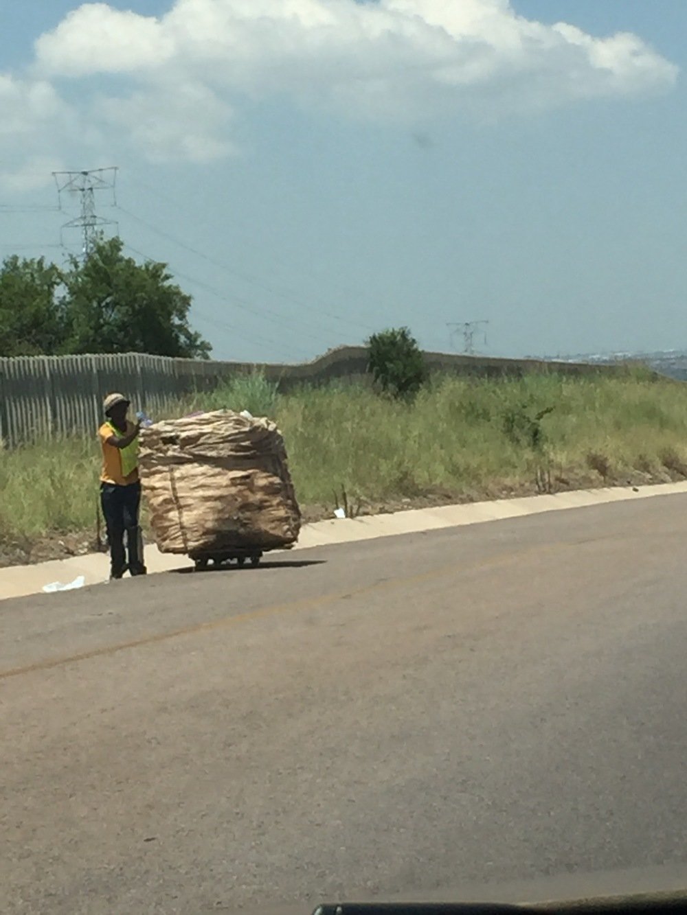 People would be walking these huge carts on the side of the road/highway. It broke my heart because I am guessing with the amount of work put into filling and transporting the carts, it wasn't a lot of payback.