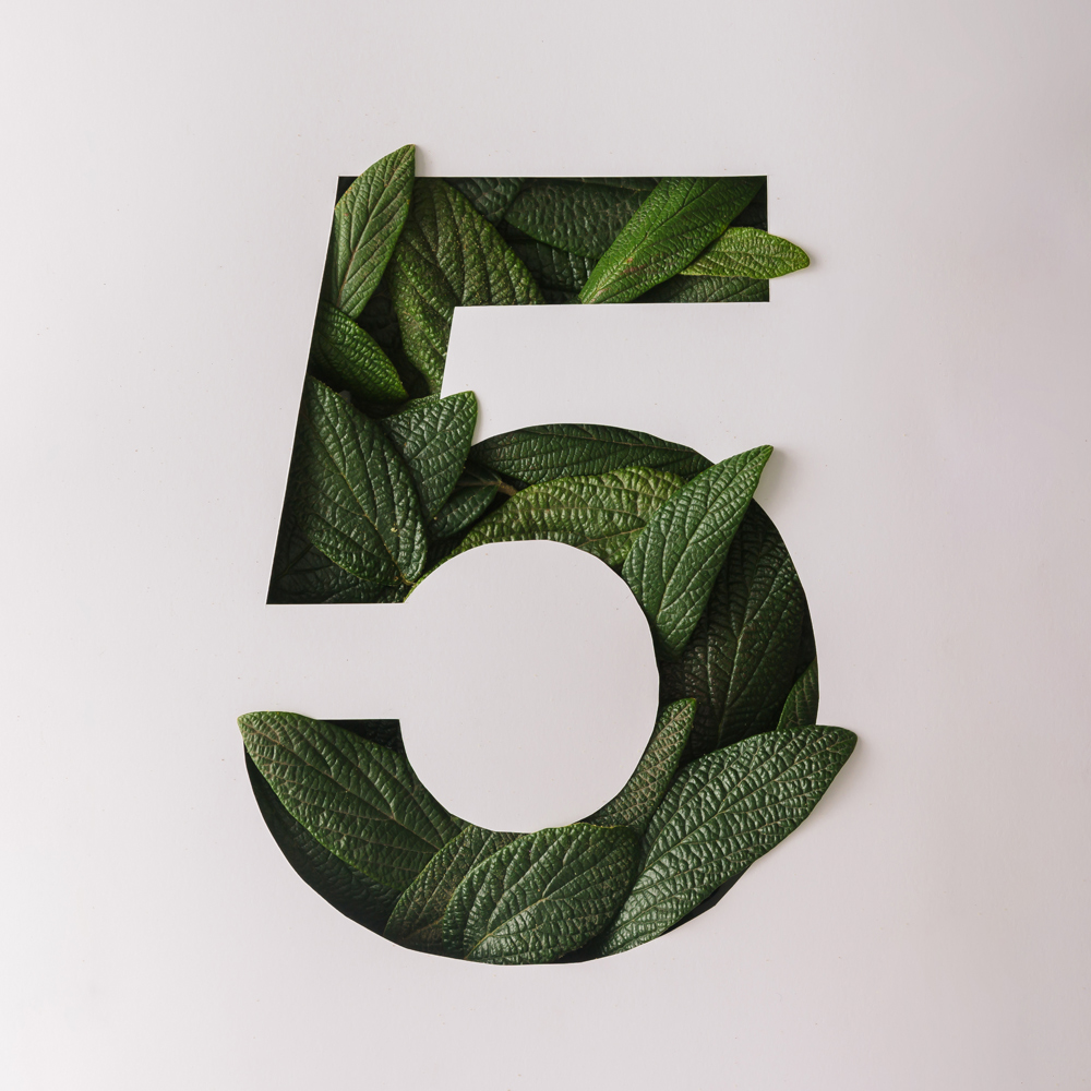 6 DEC